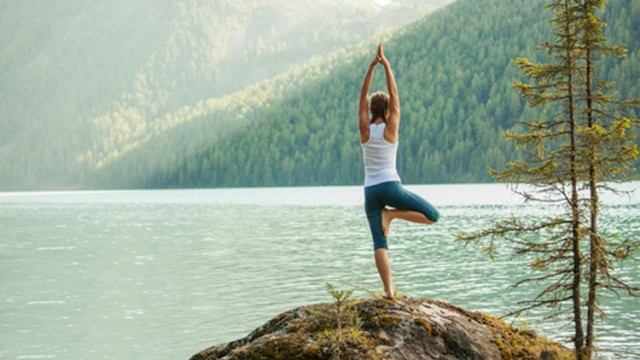 gotta joga yoga app apple iphone tree pose