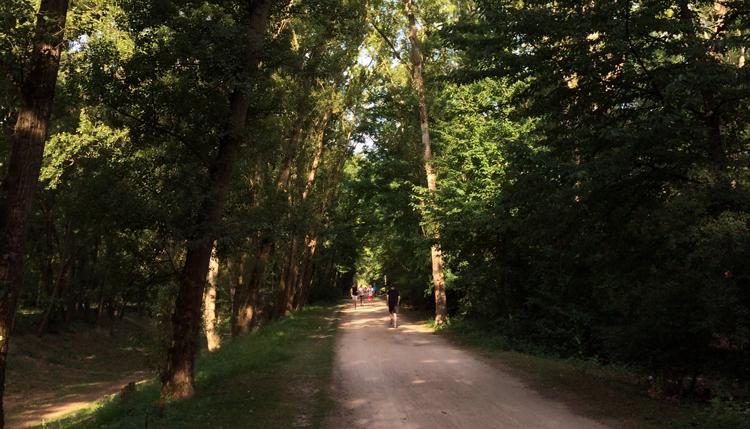 running in parc de la feyssine