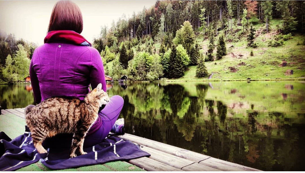 gotta joga yoga app meditation