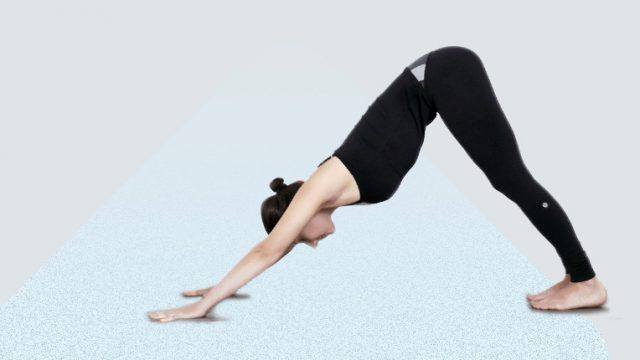 downward facing dog gottajoga yoga app
