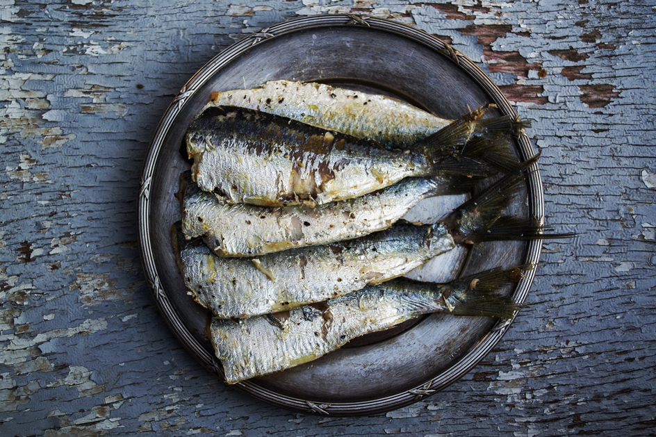 Sardines Photo: greekfood-tamystika /Pixabay